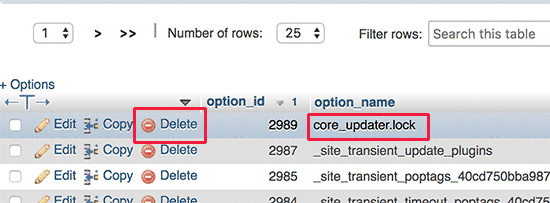 core_updater.lock